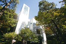 仏教文化研究所