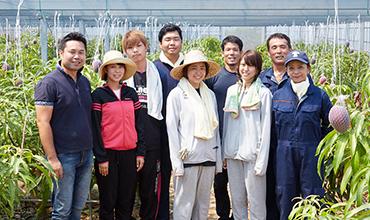 鹿児島県徳之島 x 武蔵野大学 ~ふとり農園長期インターンシップ~